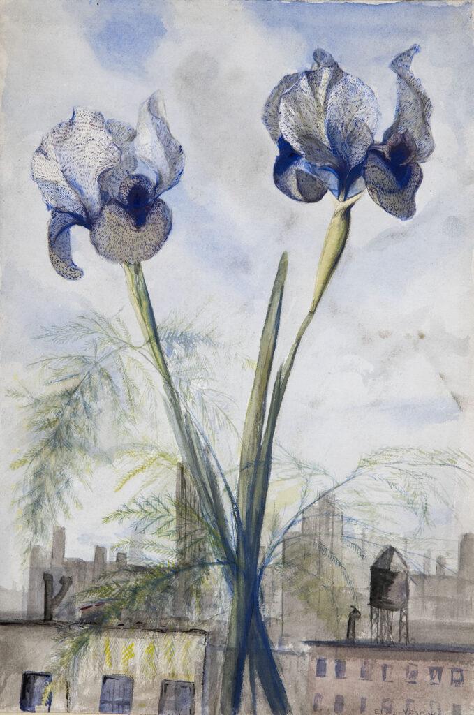 Flowers & Cityscape by Ely de Vescovi